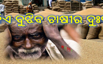 କିଏ ବୁଝିବ ଚାଷୀର ଦୁଃଖ- ଖୋଲା ଆକାଶ ତଳେ ମଣ୍ଡିରେ ଗଜା ଦେଉଛି ଧାନ ।, Nitidina, Odisha, News, Real Story, Health Tips, Life style, Daily Living, Tips, Job Updates, Yoga, Meditation, Stay Healthy, Save Tree, Save Life, Extended Lockdown