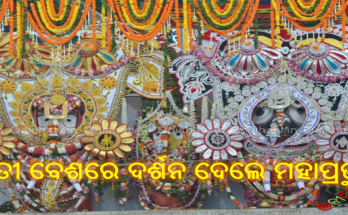 ହାତୀ ବେଶରେ ଦର୍ଶନ ଦେଲେ ମହାପ୍ରଭୁ ।, Nitidina, Odisha, News, Real Story, Health Tips, Life style, Daily Living, Tips, Job Updates, Yoga, Meditation, Stay Healthy, Save Tree, Save Life, Extended Lockdown