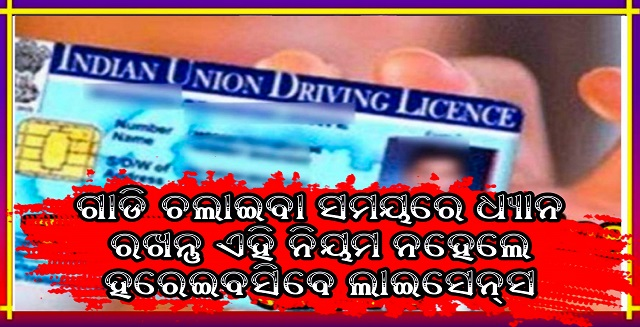 driving license can be canceled If not follow this rule, Traffic Rules, Nitidina, Driving license