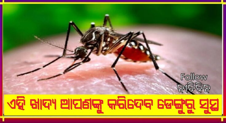 To recover Dengue fever these foods should be in your diet avoid these things, Nitidina