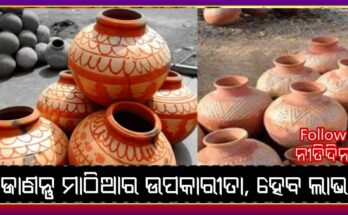 The mud pot kept at home will bring goodluck in life these measures will have to be done, Nitidina