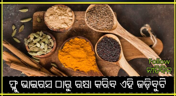 National Ayurveda Day: These 5 herbs protect against flu-virus immunity is strong, Nitidina