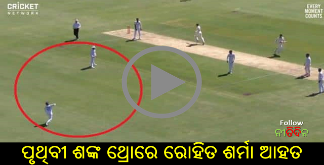 IND vs AUS Prithvi Shaw's throw hits Rohit Sharma's chest then trolls like this on Brisbane Test